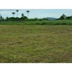 Land 1 Rai for sale soi 112 Hua Hin
