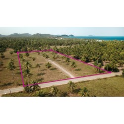 Land 6 rai 400 M from beach for sale in Pranburi