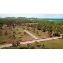 Terrain 6 rai à vendre à 400 M de la mer à Pranburi