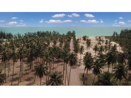 Land on the beach for sale in Thap Sakae
