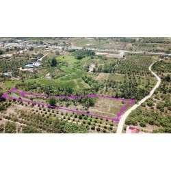 Land 3 rai 361 T.w. for sale in Pranburi 450 m from Phetkasem
