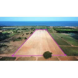 Land 30 rai 500 M from beach for sale in Tung Mamao