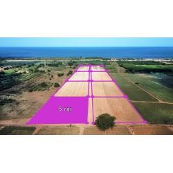 Parcelle 5 rai vue panoramique à vendre à 500 M de la mer à Tung Mamao