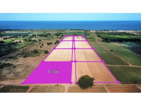 Plot 5 rai 500 M from beach for sale in Tung Mamao