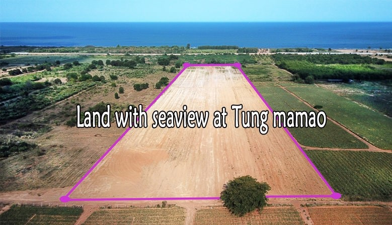 Land 30 rai with seeview at 500 M from beach for sale in Tung Mamao