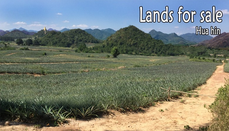 Land for sale in Hua Hin - Thailand
